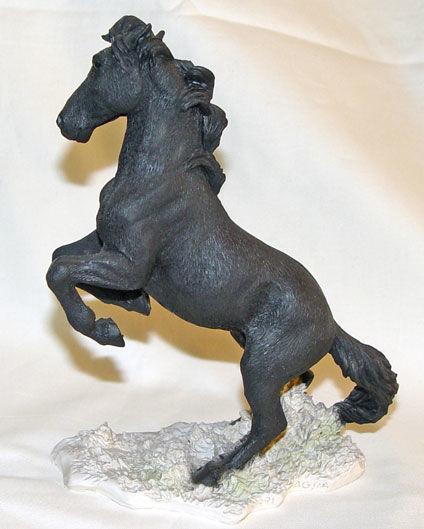 Image de Black Horse