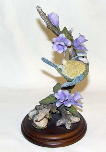 Image de Blue Tit with Canterbury Bell