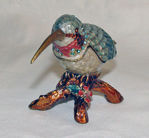 Image de boxes - Hummingbird