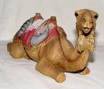 Image de Camel