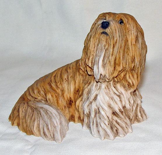 Image de Tibetan Terrier Dog
