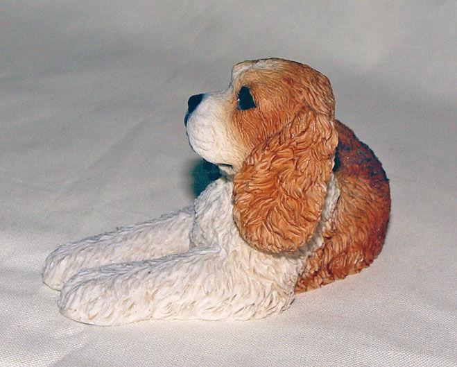 Image de Dog - Cocker
