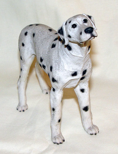 Image de Dog - Dalmata