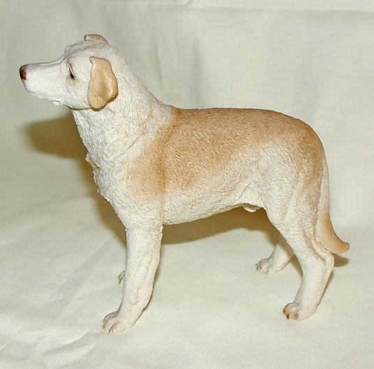 Image de Dog - Labrador