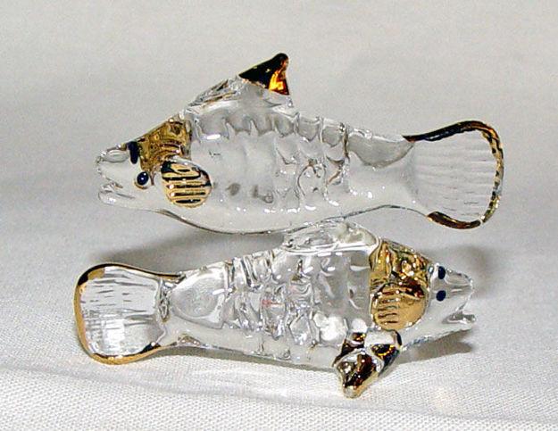 Image de Fish - Zodiac