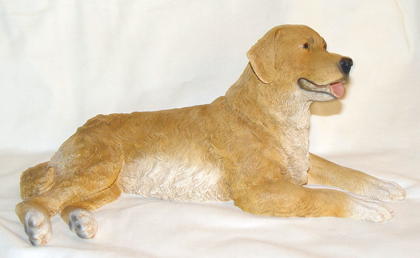 Image de Golden Retriever Lying