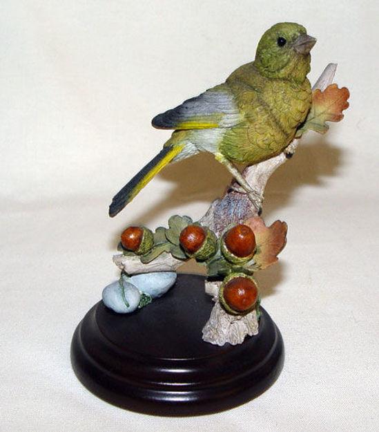 Image de Green Finch with Acorns