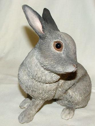 Image de Grey Rabbit - Lying