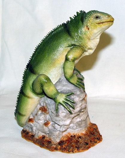 Image de Iguana