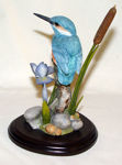 Image de Kingfishers with Blue Iris and Bulrush