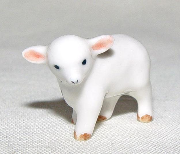 Image de Lamb