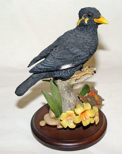 Image de Myna Bird with Butterfly