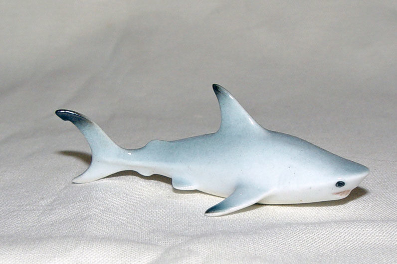 Image de Shark