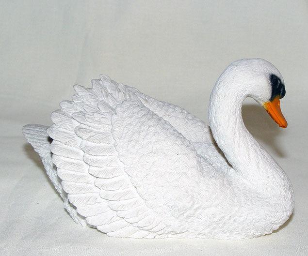 Image de Swan