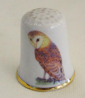 Image de Thimble barn owl
