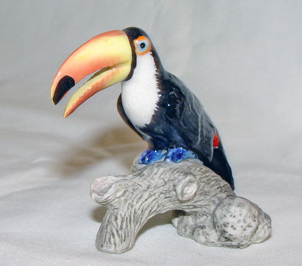 Image de Tucano
